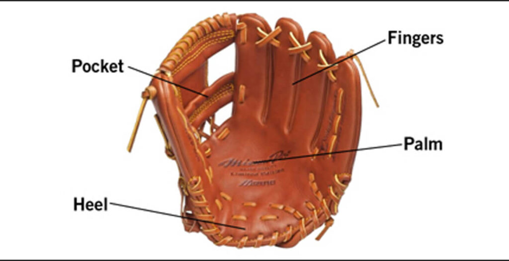 parts of a baseball glove. Oiling a glove relaxes the pocket